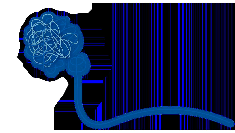 Psicologa Online Psicologa Terni